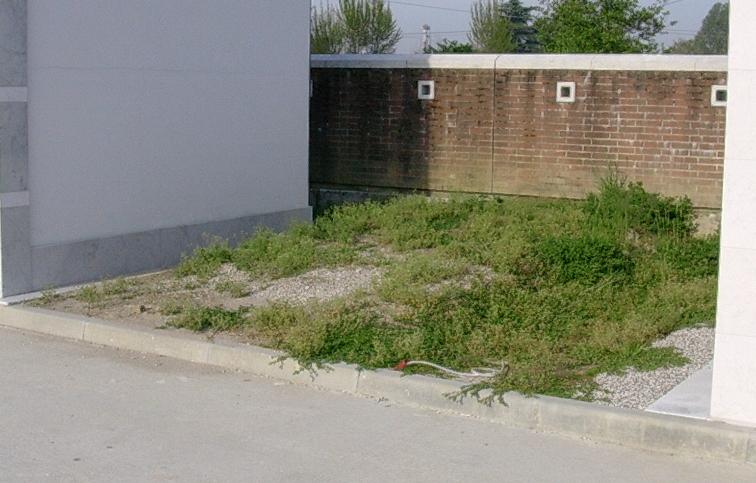 Delimitazione dell'area su cui erigere la cappella cimiteriale
